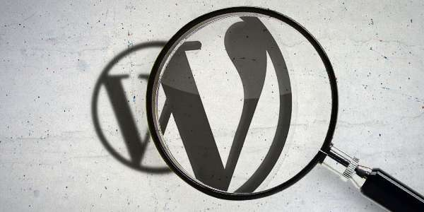 7 simple steps to optimise your WordPress website