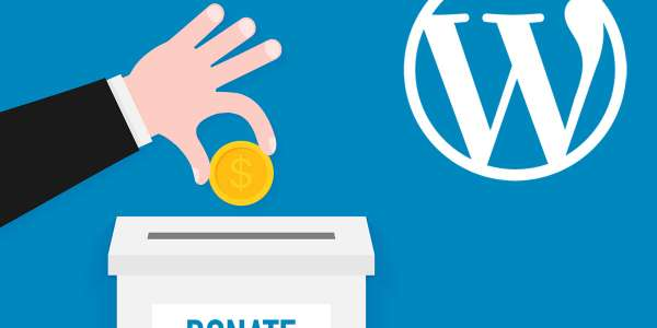 Nine solutions for taking donations through your website using WordPress